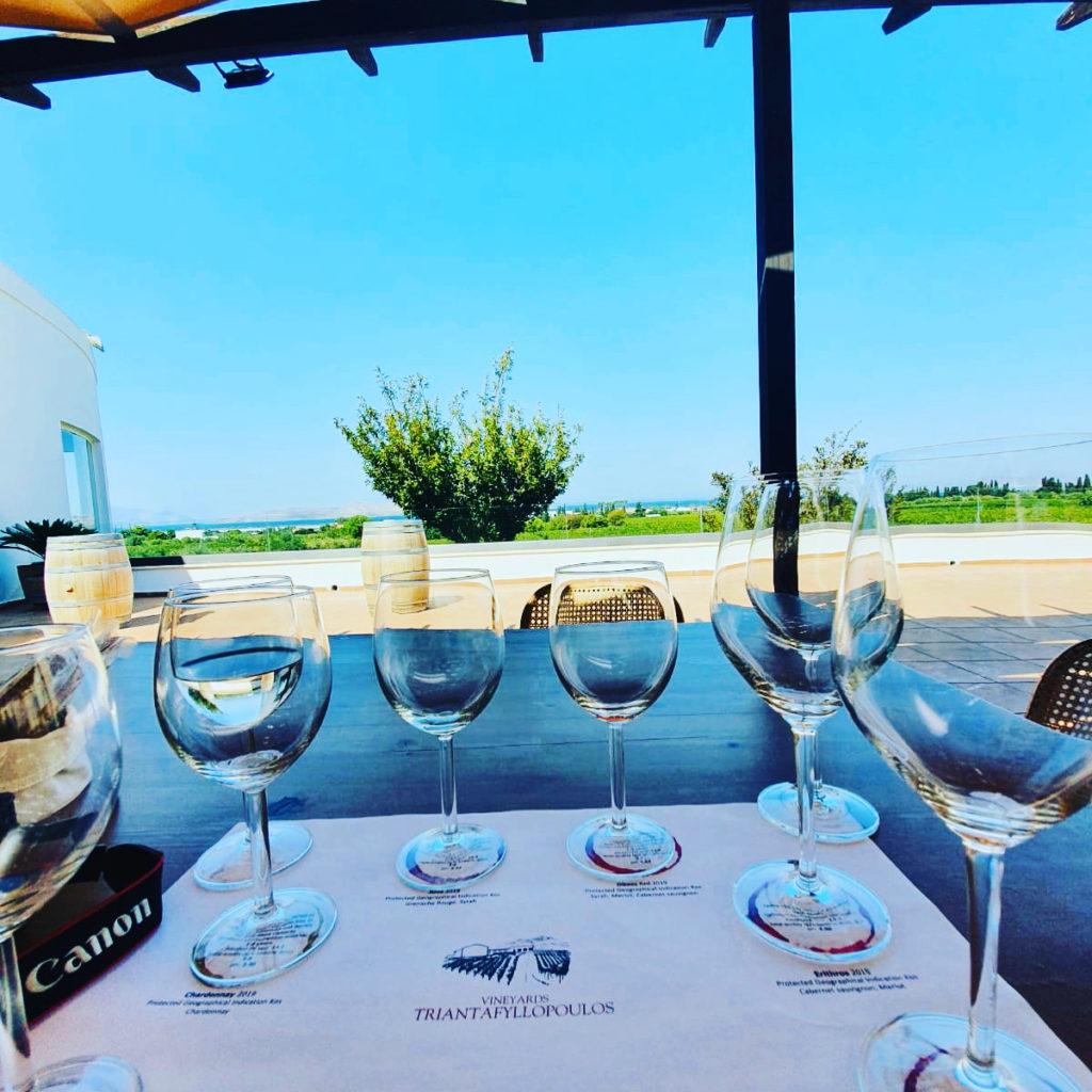 Wine Tasting at Triantafyllopoulos Vineyard Kos Island Greece