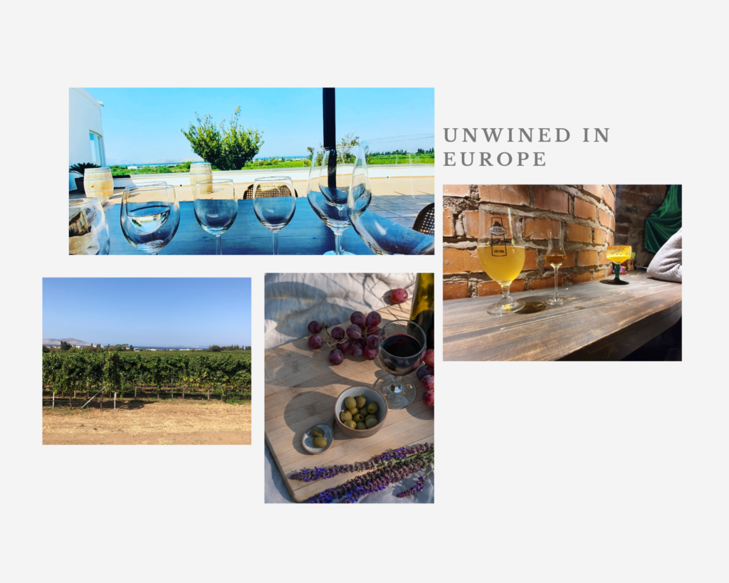the ultimate guide to to europes hidden countries for wine